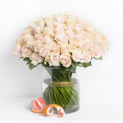 100 roses pink In a vase