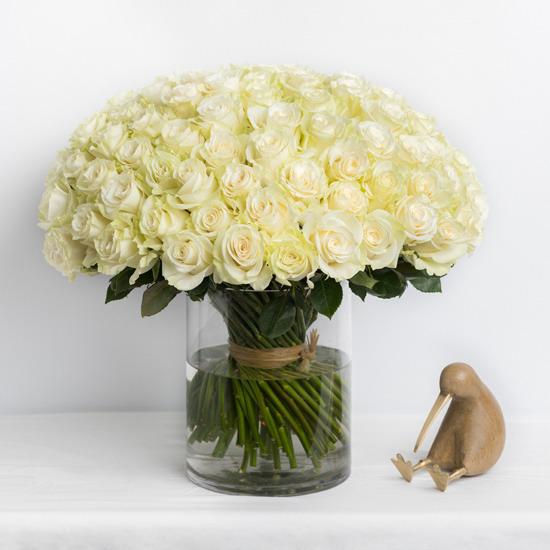 100 roses in a vase