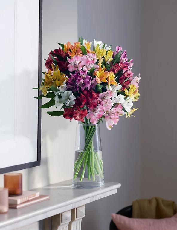 Astroemeria Blush In a Vase